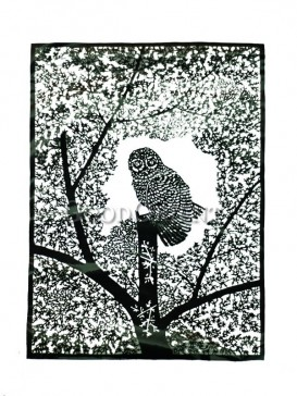 Black Night Owl Papercut