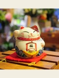 Zakka's maneki neko piggy bank