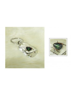 Centurial Insect Series Key Chain---Scarab