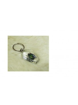 Centurial Insect Series Key Chain---Chafer