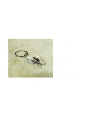 Centurial Insect Series Key Chain---
