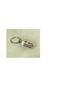 Centurial Insect Series Key Chain---Ant and Jequirity