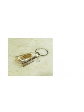 Centurial Insect Series Key Chain---Crab