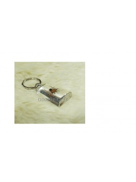 Centurial Insect Series Key Chain---Spider