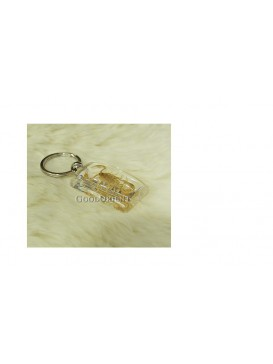 Centurial Insect Series Key Chain---Scorpions