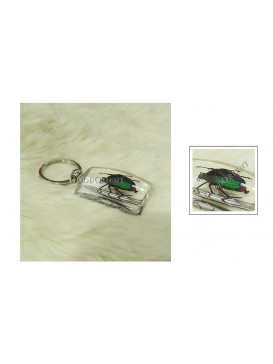 Centurial Insect Series Key Chain---Dorbeetle