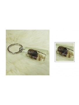 Centurial Insect Series Key Chain---Cicada
