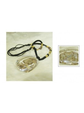 Centurial Insect Series Necklace---Crab