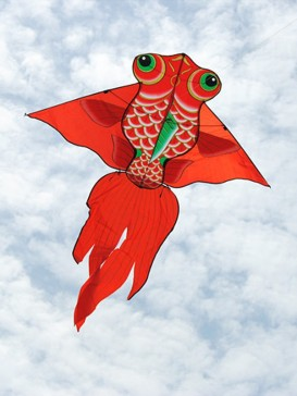 Red Big Goldfish Well  Kite