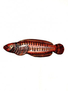 Vivid engraved Graceful Fish home decoration