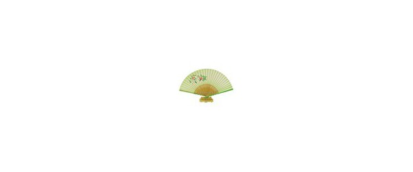 Hand Painted Silk Fans